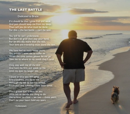 The Last Battle poem for those having to end the life of a pet